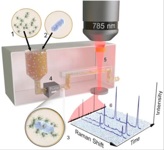 NanoMODS